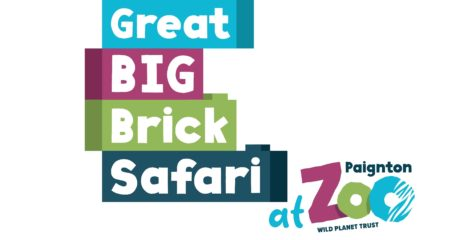 The Great Big Brick Safari- NOW ON